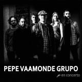 pepe-vaamonde-grupo-cartel-salas-concerto